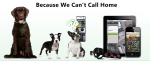 Pet-gps-tracking