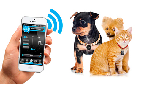 dog gps locator