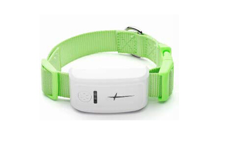 Pet GPS locator tk108
